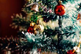 Kerst op De Klimroos